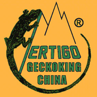 GetckokingS